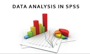 Experts that analyze research data using SPSS